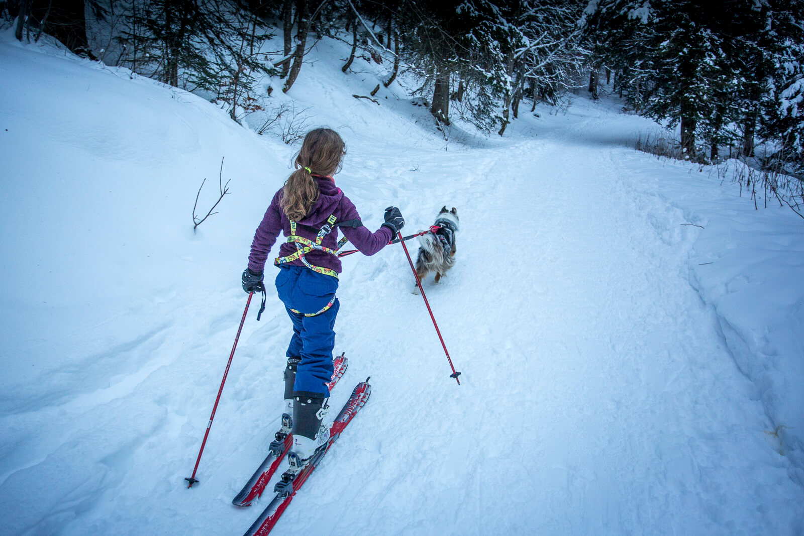 Partir en ski de rando avec ses enfants
